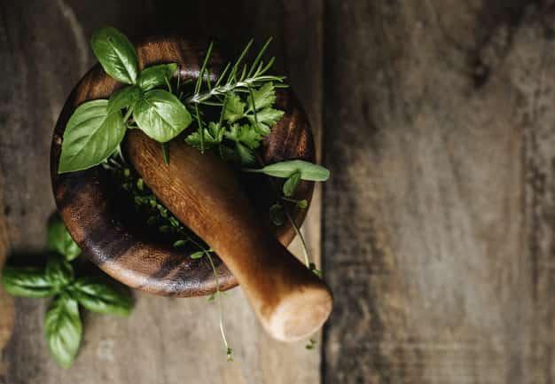 طب الأعشاب